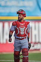 Syracuse Chiefs catcher Jhonatan Solano (4) before a game against the Buffalo Bisons on July 3, 2017 at Coca-Cola Field in Buffalo, New York.  Buffalo defeated Syracuse 6-2.  (Mike Janes/Four Seam Images)