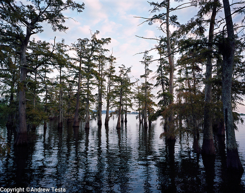 USA. Angola. 12th October 2008..Lake Kilarney is an Oxbow lake on the grounds of the prison that was once a part of the Mississippi river..©Andrew Testa/Panos