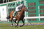 August 2, 2015. Heart to Heart, Victor Espinoza up, wins the Grade III Oceanport Stakes, one and 1/16 miles on the turf for three year olds and upward at Monmouth Park in Oceanport, NJ. Brian Lynch is trainer; Terry Hamilton is owner. Joan Fairman Kanes/ESW/CSM