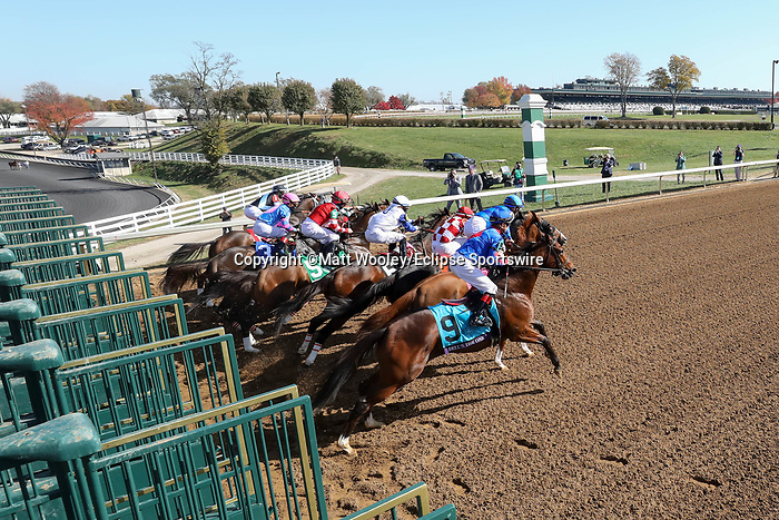 November 7, 2020 : Horses break out of the starting gate during the Filly & Mare Sprint on Breeders' Cup Championship Saturday at Keeneland Race Course in Lexington, Kentucky on November 7, 2020. Matt Wooley/Eclipse Sportswire/Breeders' Cup/CSM