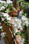 Artistic sensual portrait of a beautiful nude young woman behind white flowers of apple blossom outdoors in spring Image © MaximImages, License at https://www.maximimages.com