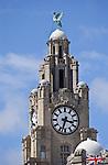 The  Royal Liver Building Liverpool England set against a blue sky