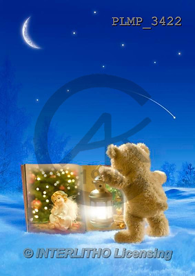 Marek, CHRISTMAS ANIMALS, WEIHNACHTEN TIERE, NAVIDAD ANIMALES, teddies, photos+++++,PLMP3422,#Xa# in snow,outsite,