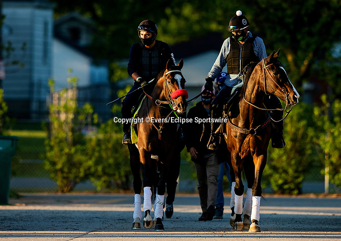 April 27, 2021: Hot Rod Charlie plied by Lava Man as they make their way to the track to prepare for the Kentucky Derby at Churchill Downs in Louisville, Kentucky on April 27, 2021. EversEclipse Sportswire/CSM