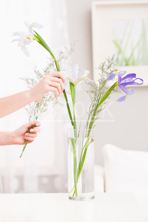 Hands putting flowers into vase