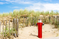fire hydrant in the dunes