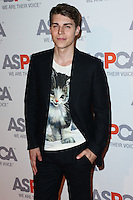 BEL AIR, CA, USA - OCTOBER 22: Nolan Funk arrives at the 2014 ASPCA Compassion Award Dinner Gala held at a Private Residence on October 22, 2014 in Bel Air, California, United States. (Photo by Xavier Collin/Celebrity Monitor)