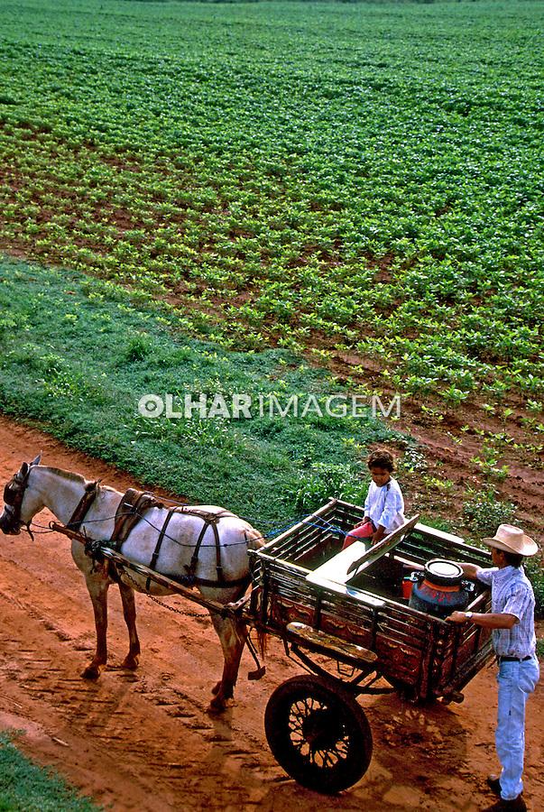 Transporte de leite em carroça no interior de São Paulo. 1999. Foto de Juca Martins.