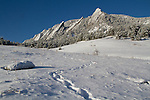 Snowshoe trail at Chautauqua Park, Boulder, Colorado, USA .  John leads private photo tours in Boulder and throughout Colorado. Year-round Boulder photo tours.