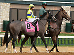 """October 07, 2018 : #8 Credit Swap and jockey Albin Jimenez in the 1st running of The Indian Summer $200,000 """"Win and You're In Breeders' CupJuvenile Turf Sprint Division"""" for trainer Mark Casse and owner John Oxley  at Keeneland Race Course on October 07, 2018 in Lexington, KY.  Candice Chavez/ESW/CSM"""