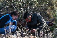 Diego Barrales, Biólogo de la UNAM en la búsqueda de Alacranes. Biology.<br /> <br /> <br /> El biologo del instituto de biologia de la UNAM, Diego Barrales, busca alacranes y escorpiones bajo las roscas en el bosque, durante la Madrean Diversity Expedicion organizada por la org Greater Good.<br /> <br /> The biologist of the UNAM biology institute, Diego Barrales, looks for scorpions and scorpions under the threads in the forest, during the Madrean Diversity Expedicion organized by theGreater Good<br /> <br /> Madrense Discovery  Expedición (MDE) GreaterGood.org, en la sierra la Elenita, para la realización de un inventario biológico con un gran grupo de participantes para la observación de animales y plantas, entre los que se encientan especialistas de distintas disciplinas de la biología de Mexico y USA, conservacionistas, astrónomos, Comisión Nacional de Areas Naturales Protegidas (CONANP), ademas de la participación de universidades como UNAM, UNISON, ITSC, Universidad de la Sierra<br /> <br /> Los datos que se recaban en estas expediciones sirven como información de referencia para entender mejor las relaciones biológicas del Archipiélago Madrense y se usan para proteger y conservar las tierras vírgenes de las Islas Serranas de Sonora Mexico. Esta expedición binacional se unieron colaboradores tanto de México como de Estados Unidos con experiencias y especialidades muy variadas, con la intención de aprender lo más posible sobre la Sierra la Elenita.