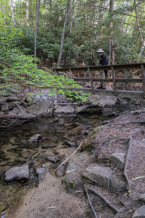 New River Gorge National Park, West Virginia.  Hiker Crossing Footbridge across Fern Creek on the Endless Wall Trail.