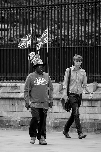 "London, March-July 2016. Reporting the EU Referendum 2016 (Campaign, result and outcomes) observed through the eyes (and the lenses) of an Italian freelance photojournalist (UK and IFJ Press Cards holder) based in the British Capital with no ""press accreditation"" and no timetable of the main political parties' events in support of the RemaIN Campaign or the Leave the EU Campaign.<br />
