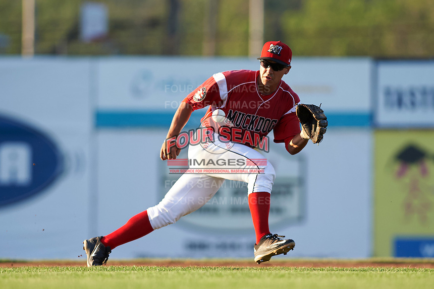 Batavia Muckdogs second baseman Mike Garzillo (11) catches a throw during a game against the Aberdeen Ironbirds on July 14, 2016 at Dwyer Stadium in Batavia, New York.  Aberdeen defeated Batavia 8-2. (Mike Janes/Four Seam Images)