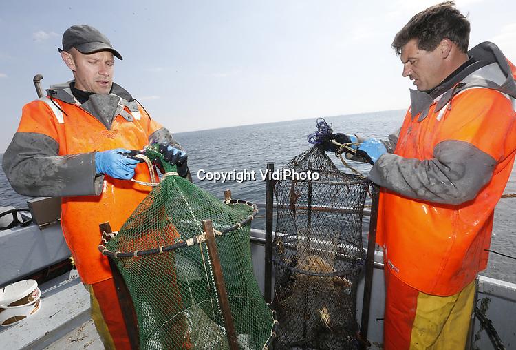 Foto: VidiPhoto<br /> <br /> YERSEKE - Het seizoen voor de kreeftenvisserij is in volle gang en duurt van half maart tot half juli. De zwagers Maurice Boone (l) en Markus Wijkhuis uit Yerseke runnen samen een vissersbedrijf met twee kotters en een werkvlet. Naast het kweken van oesters, vissen ze op kreeften en paling. Volgens de vissers zijn er teveel vergunninghouders, waardoor de visserijdruk op de Oosterschelde is toegenomen en de vangsten tegenvallen. Ondanks dat de horeca gesloten is, staan de prijzen voor de gewilde Oosterschelde kreeft niet onder druk.
