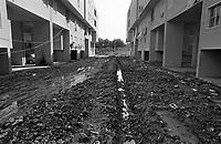 - periphery of Palermo, the Zen quarter (1986)<br /> <br /> - periferia di Palermo, il quartiere Zen (1986)