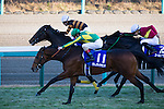 FUNABASHI,JAPAN-DECEMBER 25: Satono Diamond #11,ridden by Christophe Lemaire,wins the Arima Kinen at Nakayama Racecourse on December 25,2016 in Funabashi,Chiba,Japan (Photo by Kaz Ishida/Eclipse Sportswire/Getty Images)