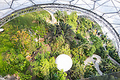 Eden project, Cornwall, England. Top view in Rainforest Biome with blimp.