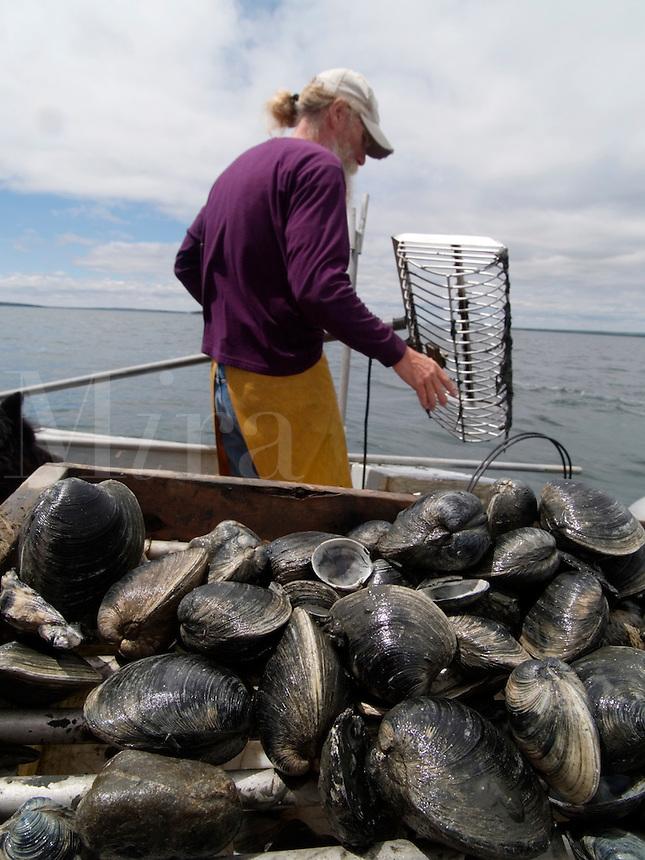 Bo Christenson, Quahoggers at work on Narragaanseet bay near Warwick, Rhode Island
