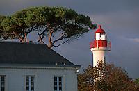 France/17/Charente Maritime/La Rochelle: Le phare sur le vieux port