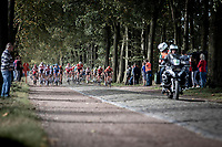 peloton riding a gravel/cobbles section.<br /> <br /> 23th Memorial Rik Van Steenbergen 2019<br /> One Day Race: Beerse > Arendonk 208km (UCI 1.1)<br /> ©kramon