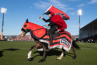 The Crusaders horses ride round the stadium before the 2020 Super Rugby match between the Crusaders and Highlanders at Orangetheory Stadium in Christchurch, New Zealand on Saturday, 9 August 2020. Photo: Joe Johnson / lintottphoto.co.nz