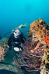 Ancient Mariner & United Caribbean Wrecks, Model Nikole Heath