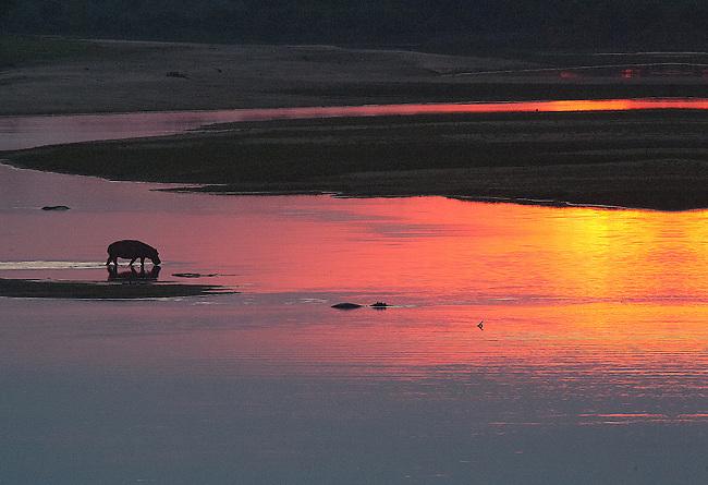 Sunrise on the Luangwa River, South Luangwa National Park, Zambia