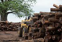 MOZAMBIQUE, Beira Corridor, timber trade of chinese companies for export to China, loading and truck transport of logged trees from Tete province to harbor Beira, behind Baobab tree / MOSAMBIK, Beira Korridor, Holzhandel von chinesischen Firmen fuer Export nach China, Verladung und LKW Transport von Baumstaemmen aus der Provinz Tete zum Hafen Beira, Kahlschlag in Mosambik, taeglich kommen hunderte Lastwagen mit Holz in Beira an, Hintergrund Baobab Baum