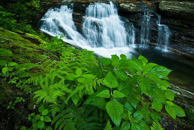Lower Skinny Dip Falls on the East Fork of Pigeon River, Blue Ridge Parkway, North Carolina  (Along the East Fork/Mountains-to-sea Trail)