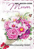 John, FLOWERS, BLUMEN, FLORES, paintings+++++,GBHSMOCC50-1209B,#F#, EVERYDAY