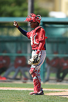 Washington Nationals catcher Pedro Severino (2) during a minor league spring training game against the Atlanta Braves on March 26, 2014 at Wide World of Sports in Orlando, Florida.  (Mike Janes/Four Seam Images)