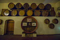 France, Provence, Vaucluse region, Chateauneuf-du-Pape, Skalli winery, 12 k's north of Avignon.