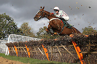 Reve De Nuit ridden by Conor O'Farrell in jumping action during the Kettle Chips Handicap Hurdle - Horse Racing at Fakenham Racecourse, Norfolk - 26/10/12 - MANDATORY CREDIT: Gavin Ellis/TGSPHOTO - Self billing applies where appropriate - 0845 094 6026 - contact@tgsphoto.co.uk - NO UNPAID USE