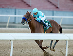 May 2, 2020: Charlatan #1, ridden by Martin Garcia, wins the first division of the Arkansas Derby at Oaklawn Park Racing and Casino in Hot Springs, Arkansas. Photo by Justin Manning/Eclipse Sportswire/CSM