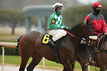 February 6, 2021: Mr. Jagermeister (6) with jockey Rocco Bowen aboard before the running of the King Cotton Stakes at Oaklawn Racing Casino Resort in Hot Springs, Arkansas on February 6, 2021. Justin Manning/Eclipse Sportswire/CSM