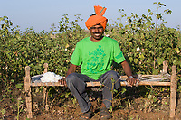 India Madhya Pradesh Khargone ,tribal farmer of cooperative Shiv Krishi Utthan Sanstha produce fairtrade and organic cotton, farmer sitting on traditional charpoy bed infront of cotton field /  INDIEN Madhya Pradesh Khargone , Kooperative Shiv Krishi Utthan Sanstha vermarktet fairtrade und Biobaumwolle von Adivasi Farmern