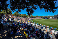 A general view of the embankment during the third One Day International cricket match between the New Zealand Black Caps and Bangladesh at the Basin reserve in Wellington, New Zealand on Friday, 26 March 2021. Photo: Dave Lintott / lintottphoto.co.nz