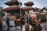 Park Nepal crisis