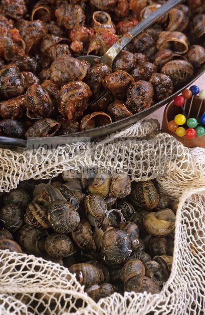 Europe/France/Languedoc-Roussillon/66/Pyrénées-Orientales/Banyuls-sur-Mer: recettes de la Sanch, escargots à la Catalane ou petit gris à la tomate