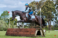 NZL-Olivia Annabell rides Astek Master. 2020 NZL-Eventing Northland Horse Trial. Barge Park, Whangarei. Sunday 8 November 2020. Copyright Photo: Libby Law Photography