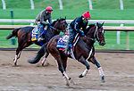 October 30, 2020: Keepmeinmind, trained by trainer Robertino Diodoro, exercises in preparation for the Breeders' Cup Juvenile at Keeneland Racetrack in Lexington, Kentucky on October 30, 2020. Scott Serio/Eclipse Sportswire/Breeders Cup/CSM