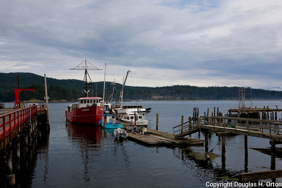 Retired commercial fishing boats lie near the red government dock in Sooke Harbor, British Columbial, west of Victoria.