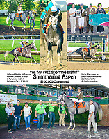 Shimmering Aspen winning The Tax Free Shopping Stakes at Delaware Park on 9/29/18