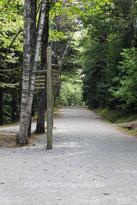Carriage Road at Eagle Lake #A77