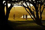 Features:  Public Golf Courses
