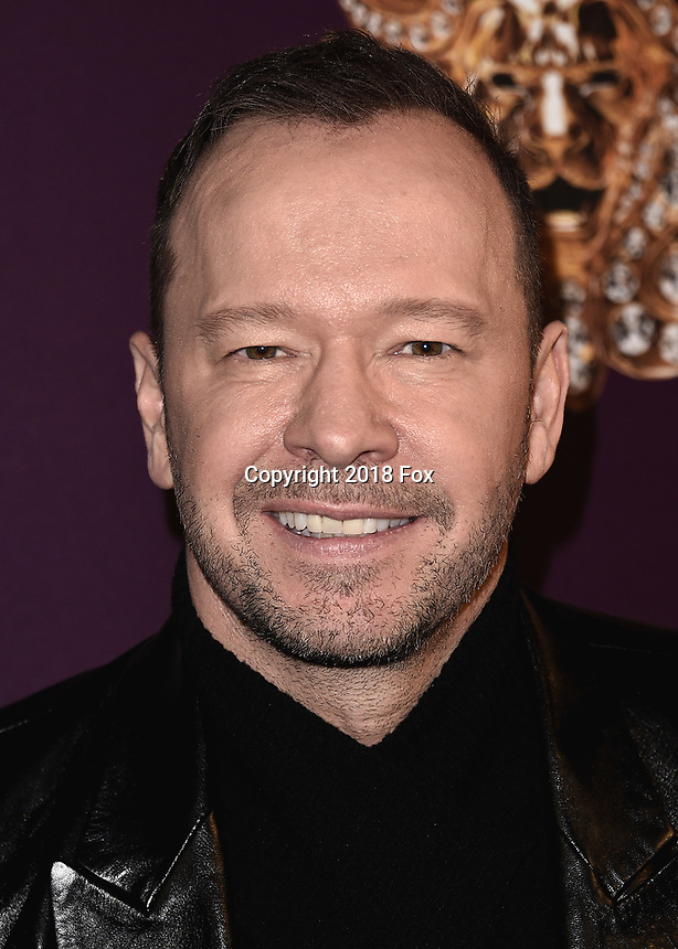 """WEST HOLLYWOOD - DECEMBER 13:  Donnie Wahlberg at the premiere karaoke event for season one of """"The Masked Singer"""" at The Peppermint Club on December 13, 2018 in West Hollywood, California. (Photo by Scott Kirkland/Fox/PictureGroup)"""