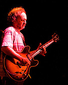Tinsley Ellis plays the blues at the 2007 Marquette Area Blues Fest in Marquette Michigan.