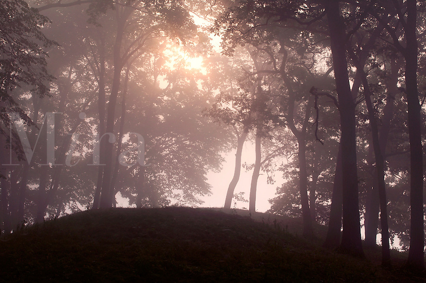 Ancient Indian mounds and fog at sunrise, Effigy Mounds National Monument, Allamakee County, Iowa
