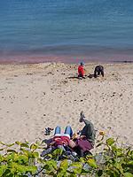 Südstrand Unterland, Insel Helgoland, Schleswig-Holstein, Deutschland, Europa<br /> Southern beach, Unterland, Helgoland island, district Pinneberg, Schleswig-Holstein, Germany, Europe